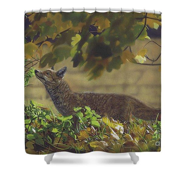 The Fantastic Mr Fox Shower Curtain