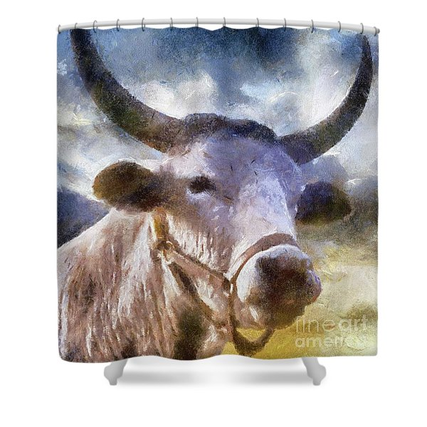 The Majestic Bull By Sarah Kirk Shower Curtain