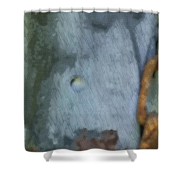 The Man In The Mirror Shower Curtain