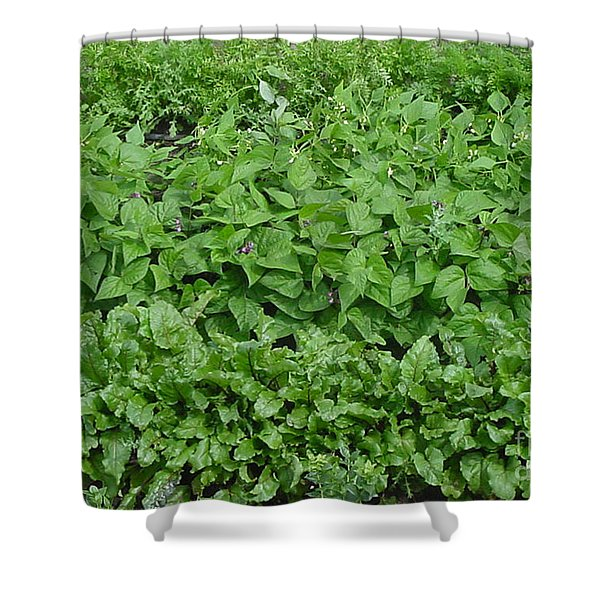 The Market Garden Landscape Shower Curtain