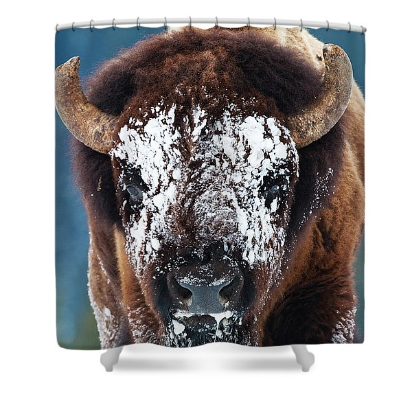 The Masked Bison Shower Curtain