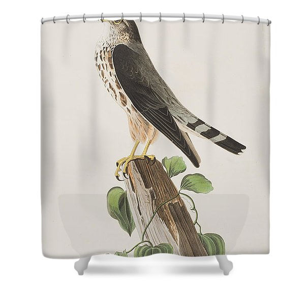 The Merlin Shower Curtain
