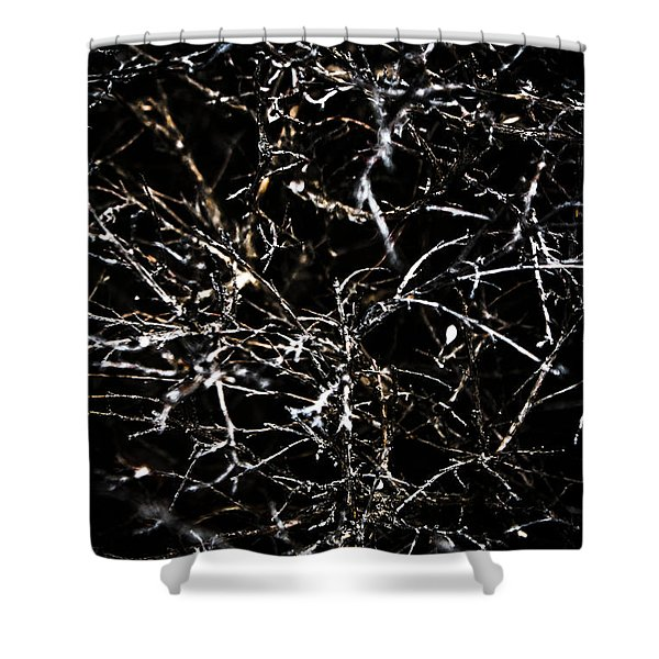 The Midnight Thicket Shower Curtain