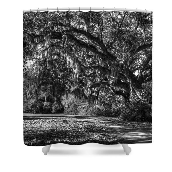 The Mighty Oaks 1 Bw Shower Curtain