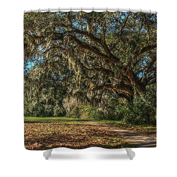 The Mighty Oaks 1 Shower Curtain