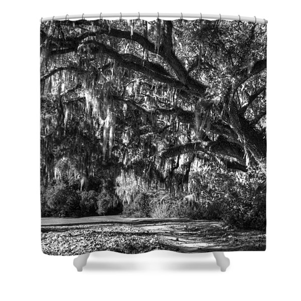 The Mighty Oaks 2 Bw Shower Curtain