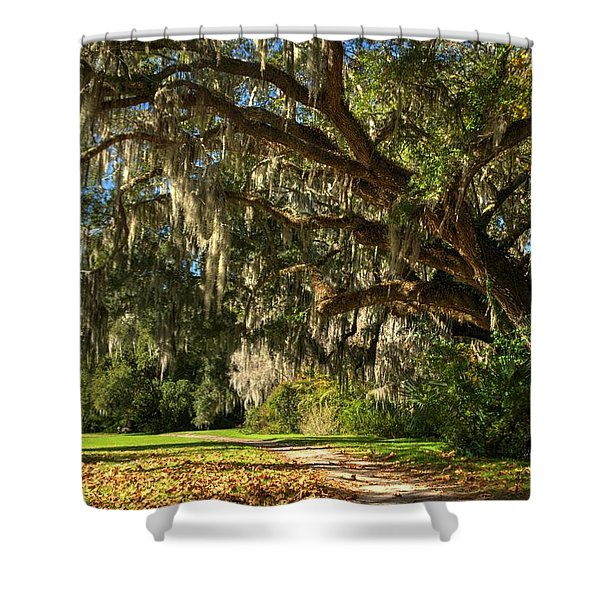 The Mighty Oaks 2a Shower Curtain