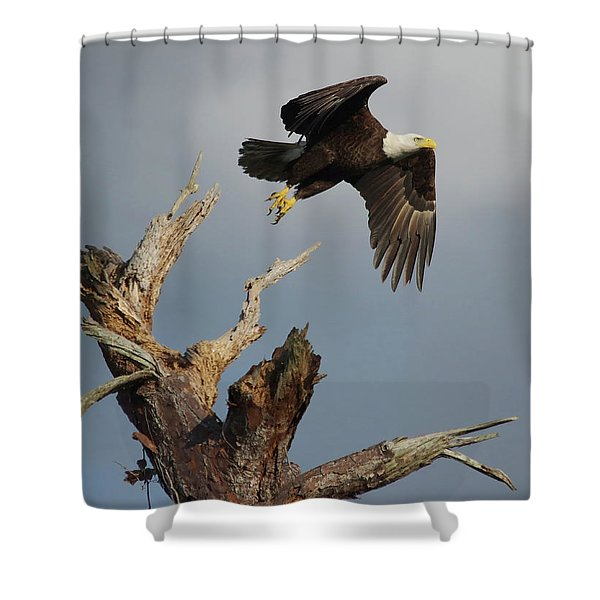 the Mighty Ozzie. Shower Curtain
