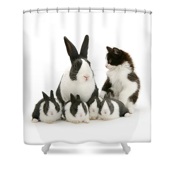 The Misfit Shower Curtain