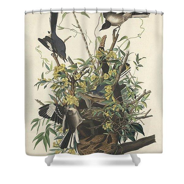 The Mockingbird Shower Curtain