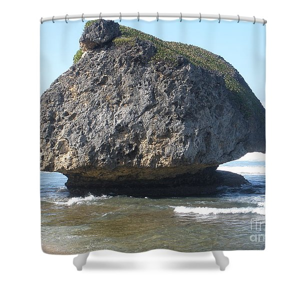 The Mushroom Rock Shower Curtain