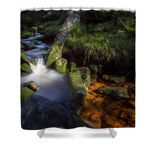 the Oder in the Harz National Park Shower Curtain