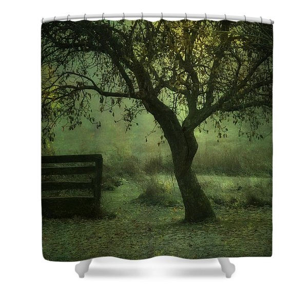 The Old Apple Tree Shower Curtain
