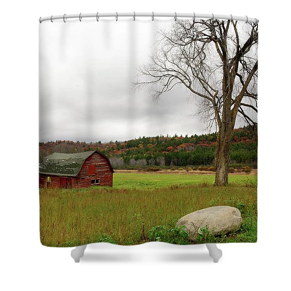 Shower Curtain featuring the photograph The Old Barn With Tree by Nancy De Flon