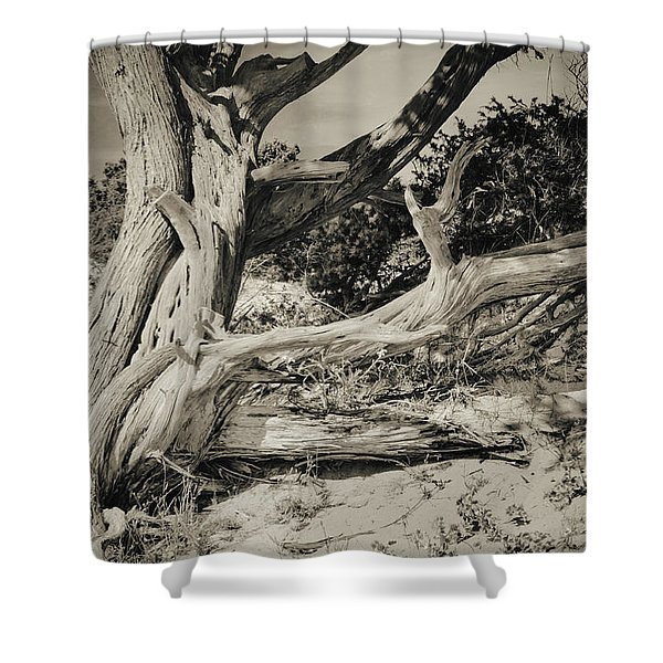 The Old Man Shower Curtain