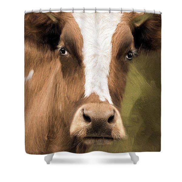 OX Shower Curtain