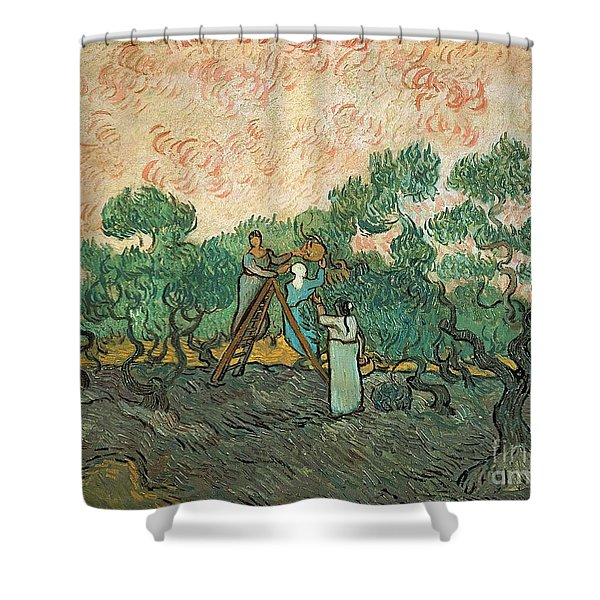 The Olive Pickers Shower Curtain