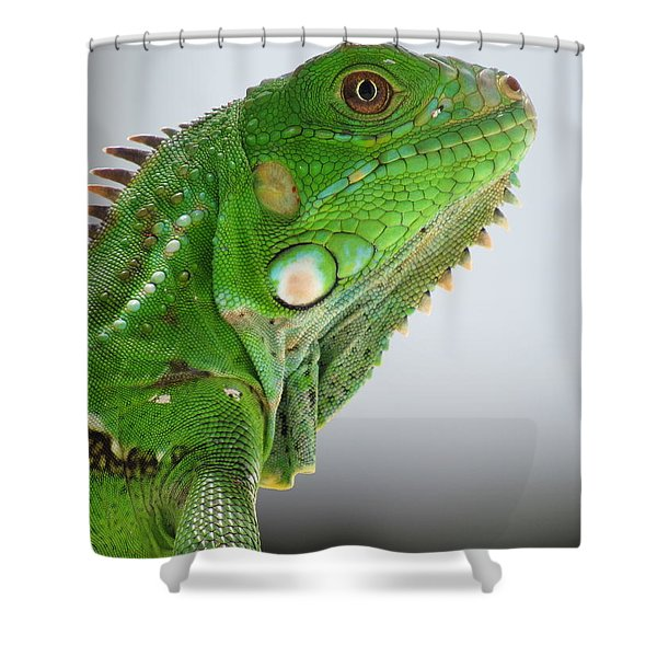 The Omnivorous Lizard Shower Curtain