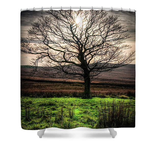 The One Tree Shower Curtain