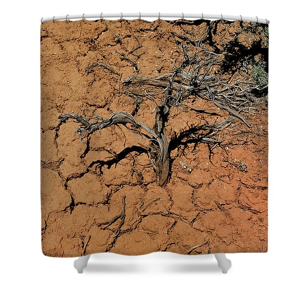 The Parched Earth Shower Curtain