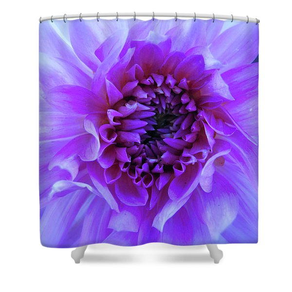 The Passionate Dahlia Shower Curtain