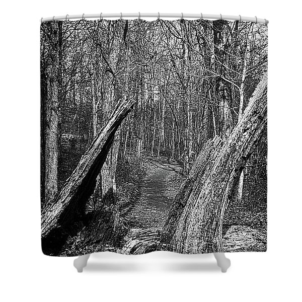 The Path Through The Woods Bandw Shower Curtain