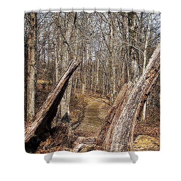 The Path Through The Woods Shower Curtain