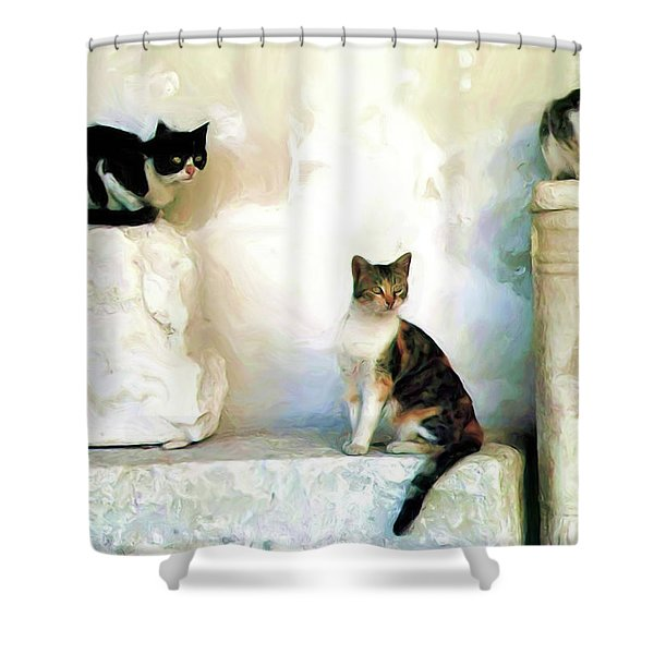 The Pose - Rdw250812 Shower Curtain