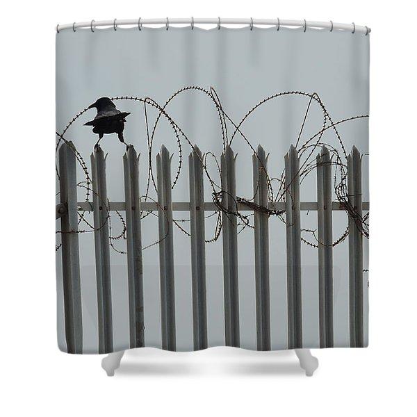 The Prisoner Shower Curtain