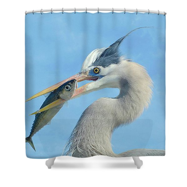The Prize 7 Shower Curtain