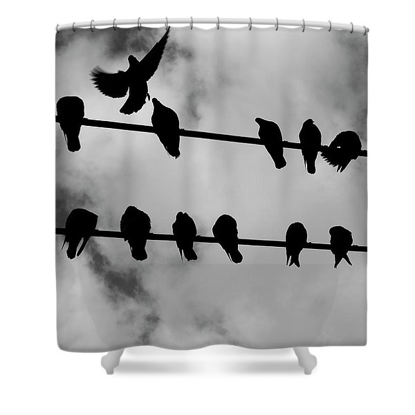 The Provider Shower Curtain