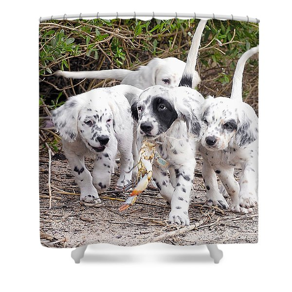 The Puppy's Prize Shower Curtain
