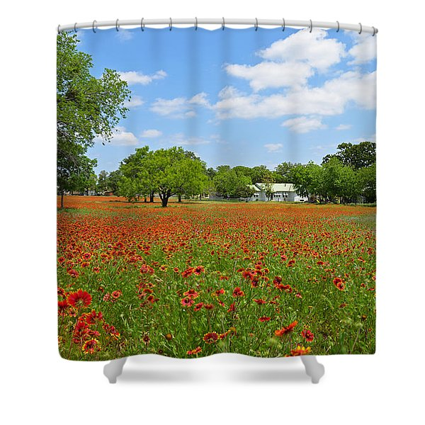 The Red Carpet Shower Curtain