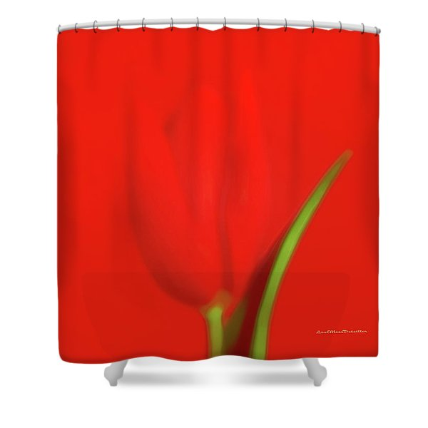 The Red Tulip Art Photograph Shower Curtain