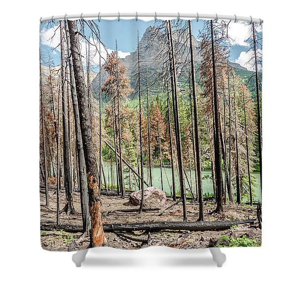 The Revealed View Shower Curtain