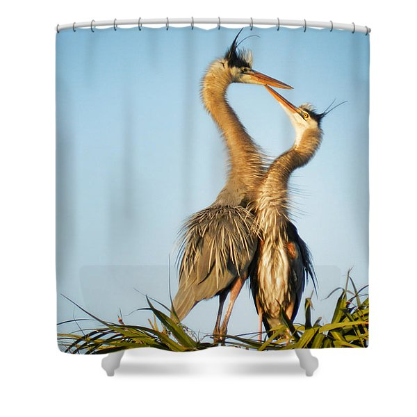 The Ritual Shower Curtain