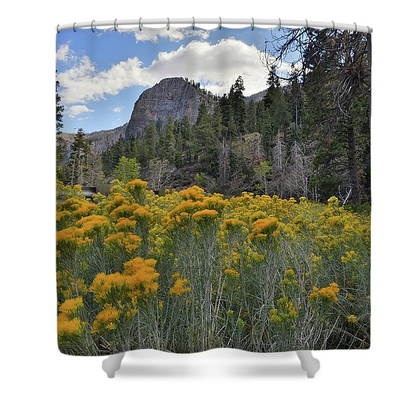 The Road To Mt. Charleston Natural Area Shower Curtain