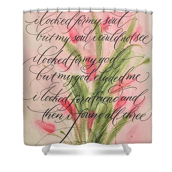 The Searcher II By Thomas Blake Shower Curtain
