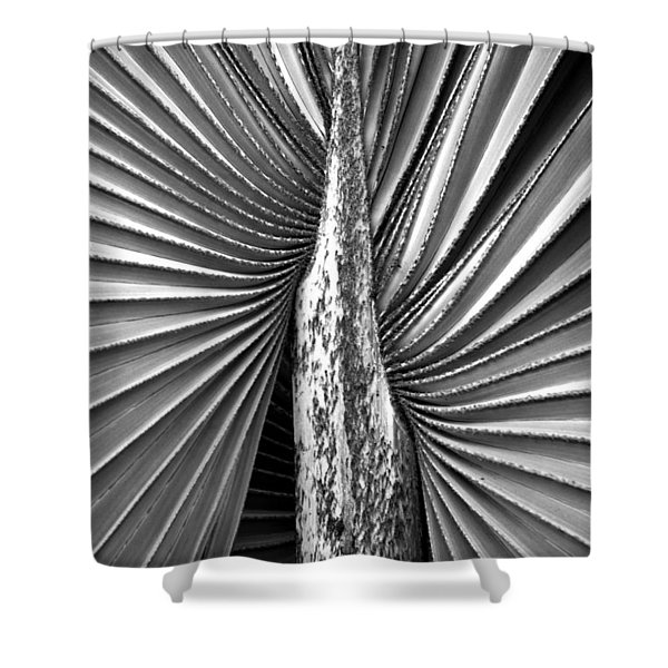 The Second Half Shower Curtain