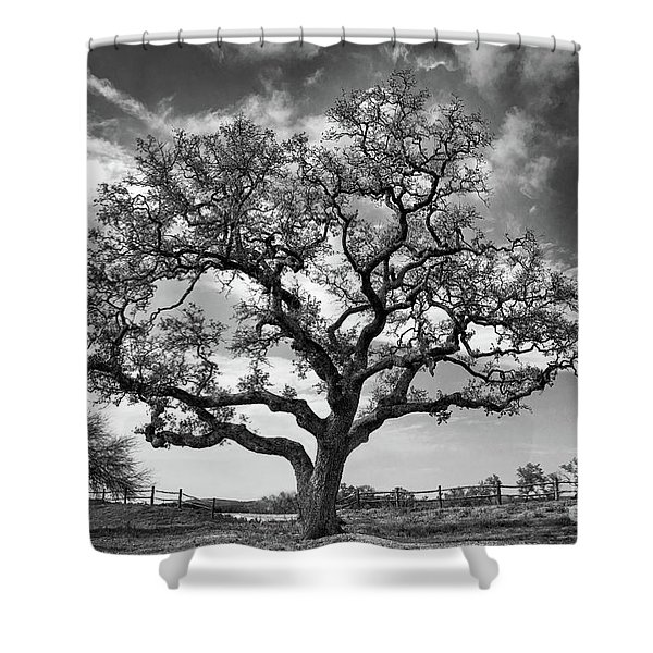 Shower Curtain featuring the photograph The Sentinel Bw by Jemmy Archer