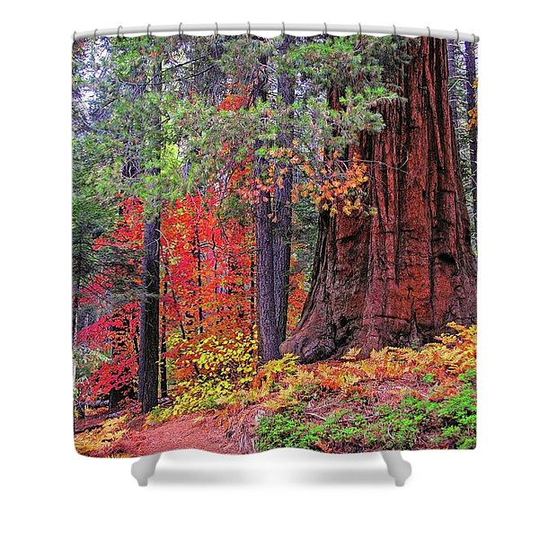 The Small And The Mighty Shower Curtain