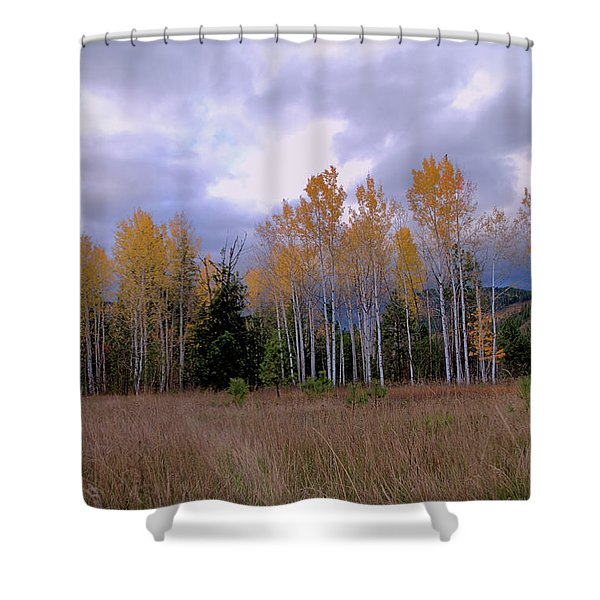 The  Song Of The Aspens 2 Shower Curtain