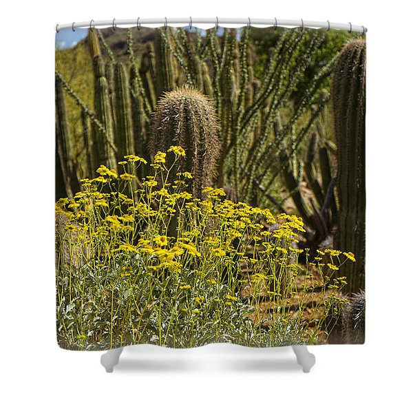The Song Of The Sonoran Desert Shower Curtain