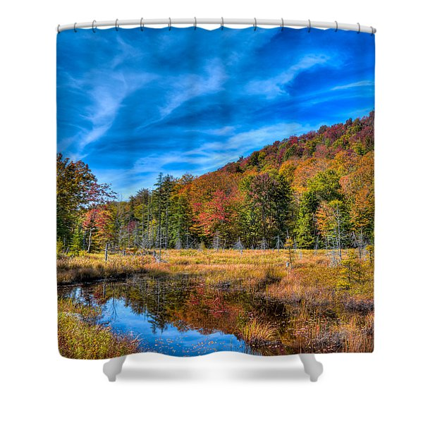 The South End Of Bald Mountain Pond Shower Curtain