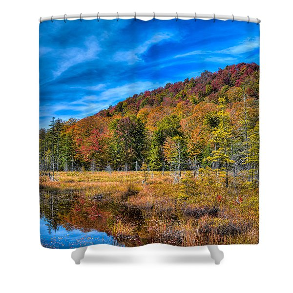 The South End Of The Pond Shower Curtain