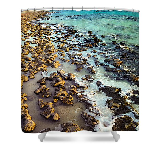 The Stromatolite Family Enjoying Its 1277500000000th Sunset Shower Curtain