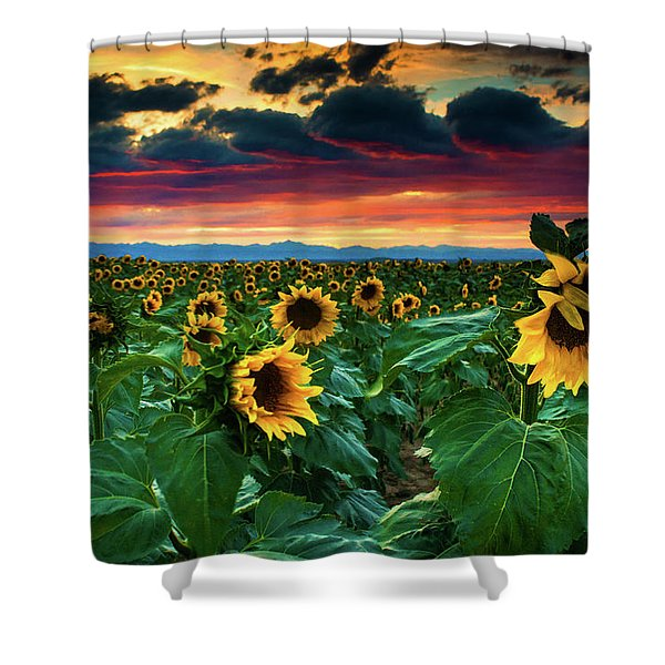 Shower Curtain featuring the photograph The Summer Winds by John De Bord