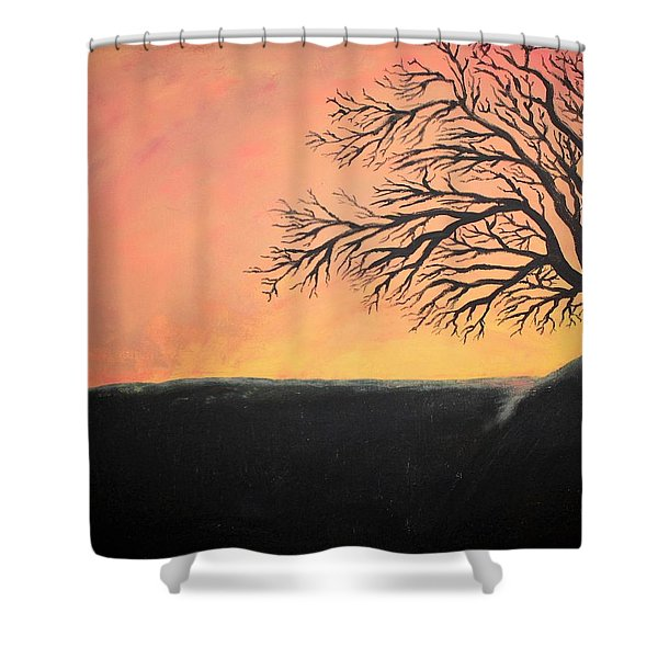 Shower Curtain featuring the painting The Sun Was Set by Antonio Romero