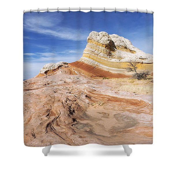 The Swirl Shower Curtain