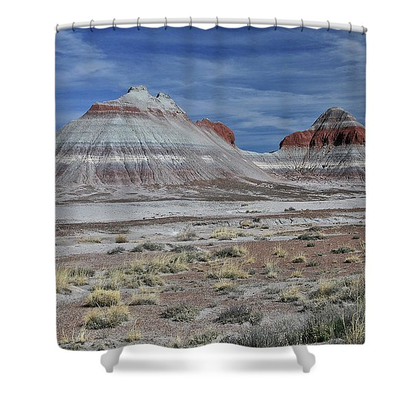 the TeePees Shower Curtain